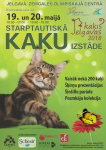 Jelgavas kaķis 2018